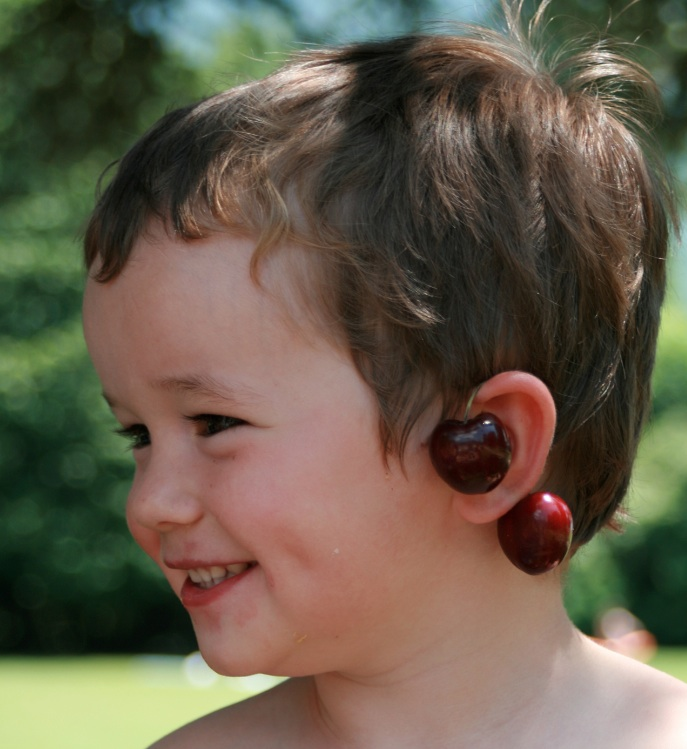 Neurosciences and Deafness: news from the front (in French)