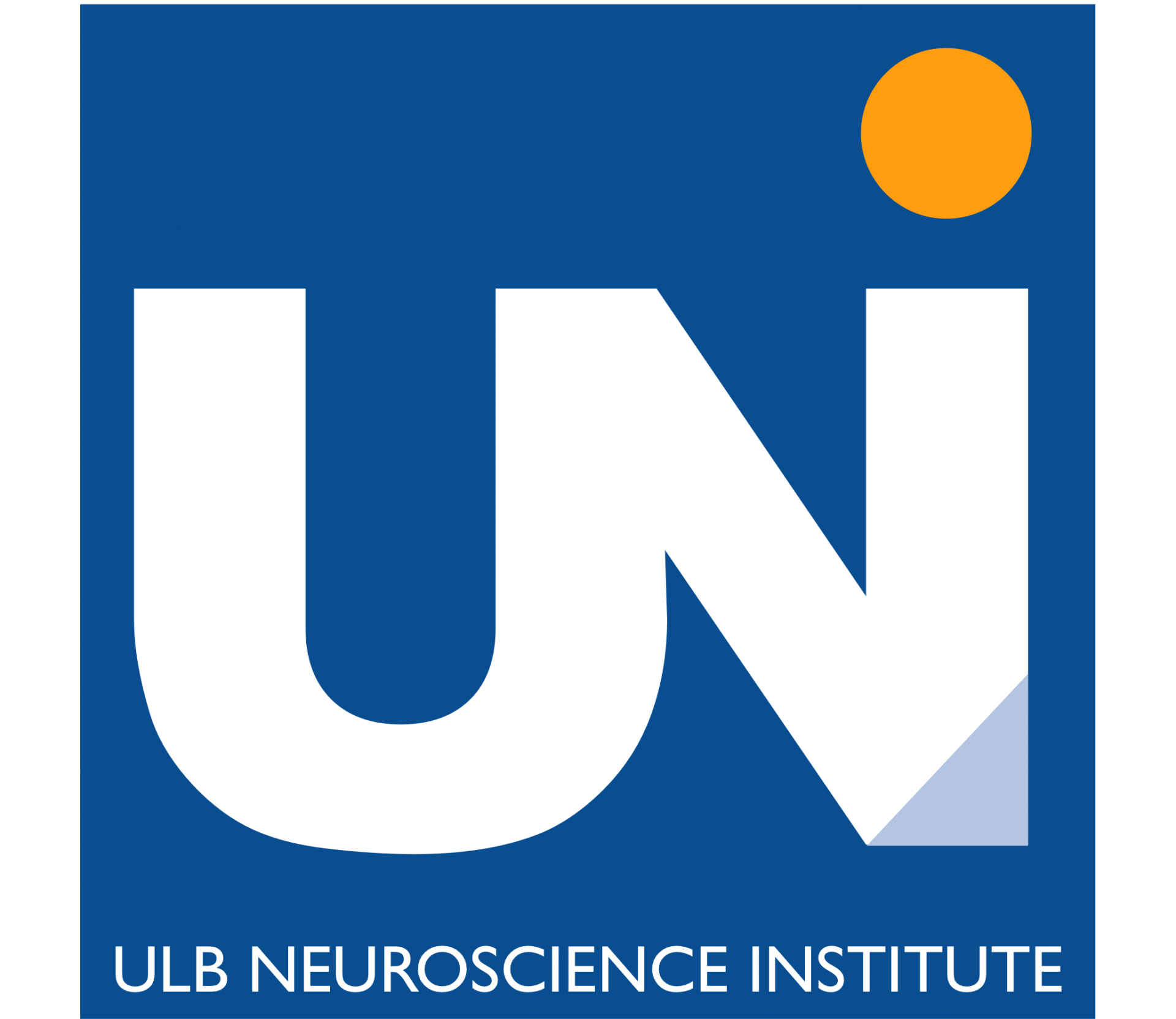 THE ULB NEUROSCIENCE INSTITUTE INTERNATIONAL Ph.D. PROGRAM IN NEUROSCIENCE 2017 CALL